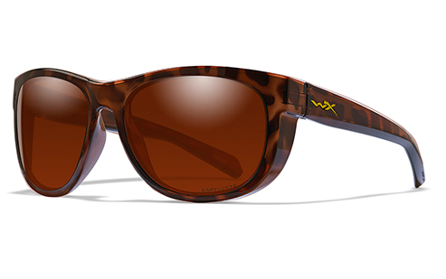 CAPTIVATE™ POLARIZED COPPER/GLOSS DEMI