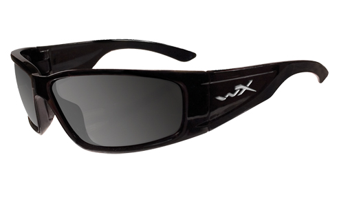 Polarized Smoke/Gloss Black